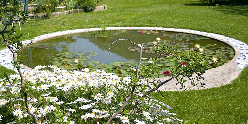 Happy Hen b&b garden