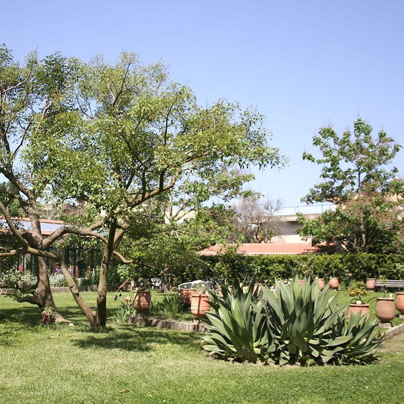 Garden lovers - Sorrento bed and breakfast